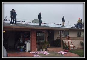 Solar Panels - Amanda 02.jpg